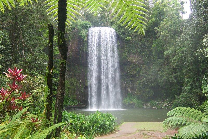 Exotic Waterfall Wallpaper: [42+] Tropical Waterfalls Wallpaper On WallpaperSafari