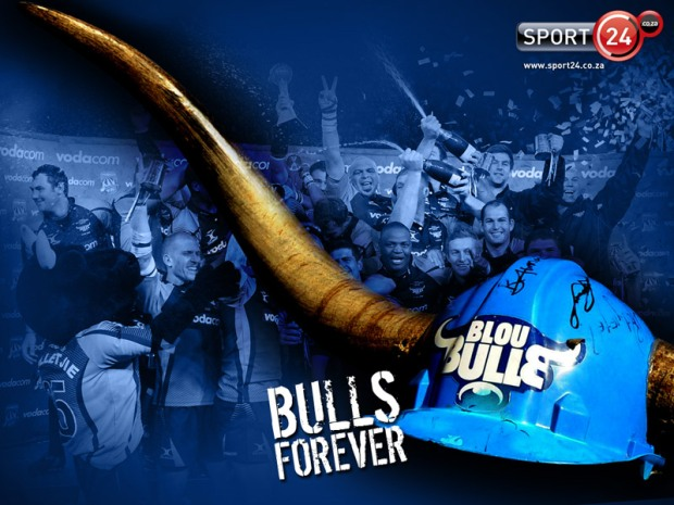 Blue Bulls Screensaver Download