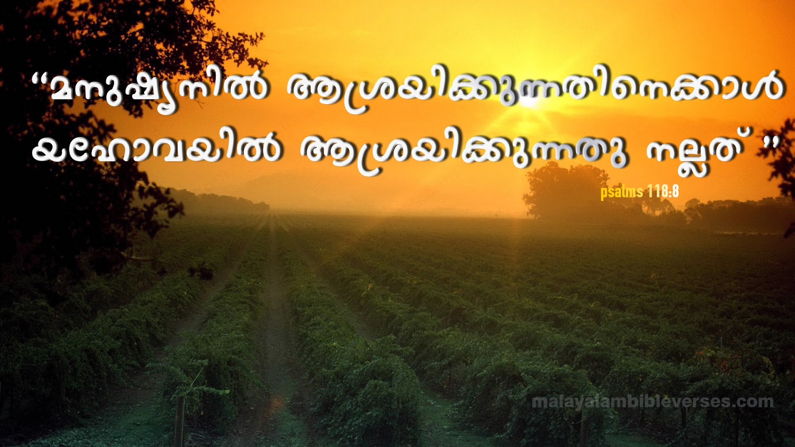 Malayalam Bible Verses Download HD High Quality Malayalam English 3D 1600x900