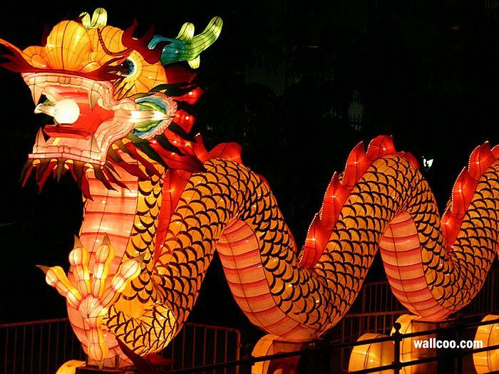 Festival Wallpapers   Dragon lantern picture   Chinese Dragon Lantern 700x525