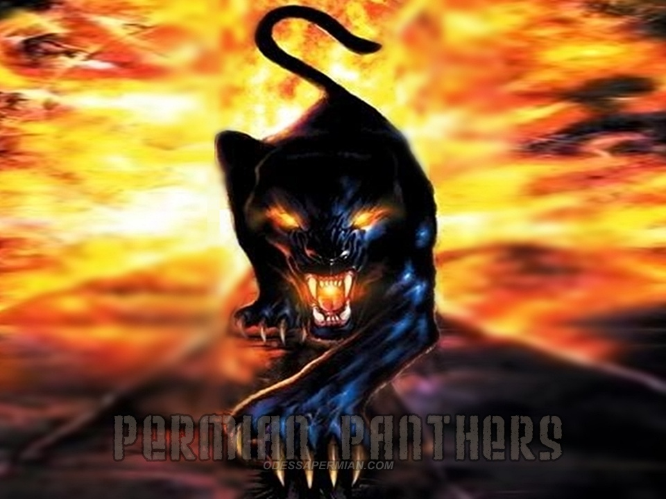 Permian Panthers Downloads 960x720