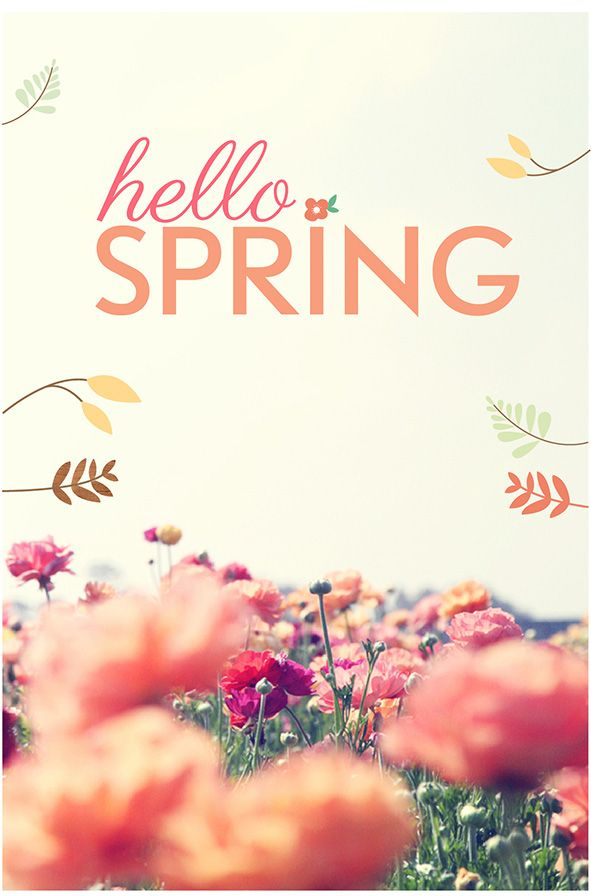 Mar 20th 79365 First day of Spring Yay Its supposed 591x896