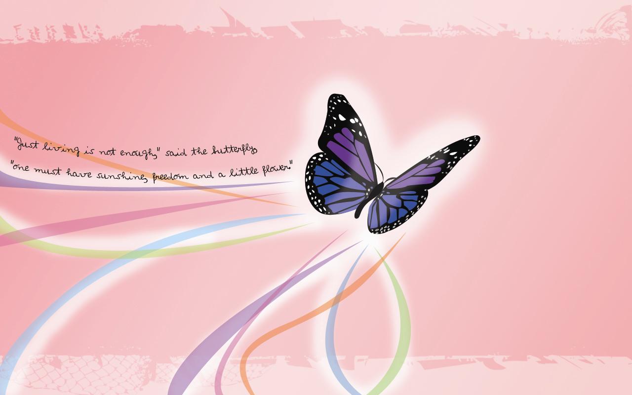 Butterfly Wallpaper HD 1280x800 ImageBankbiz 1280x800
