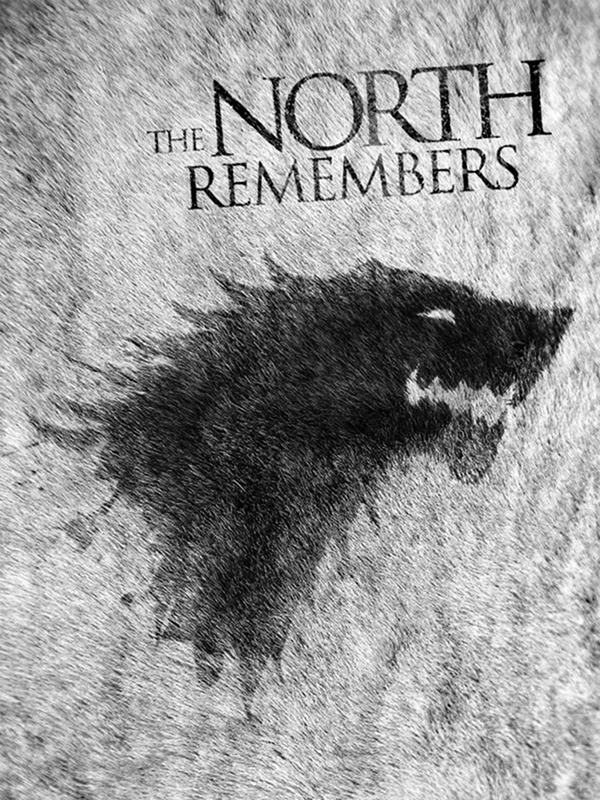 17 Game Of Thrones Direwolf House Stark Kindle 1200x1600 Wallpaper 600x800