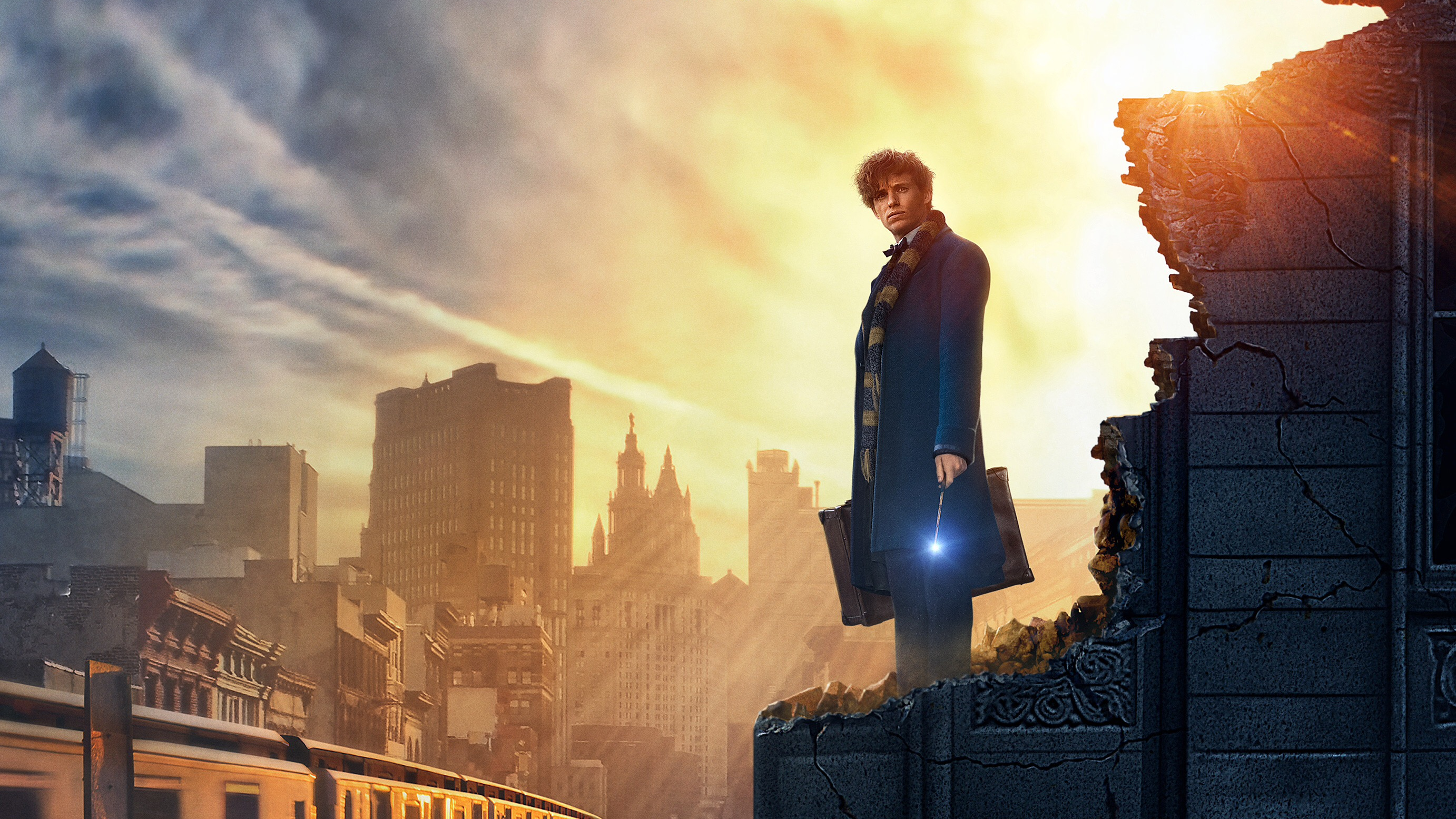 19 Fantastic Beasts and Where to Find Them HD Wallpapers 2764x1555