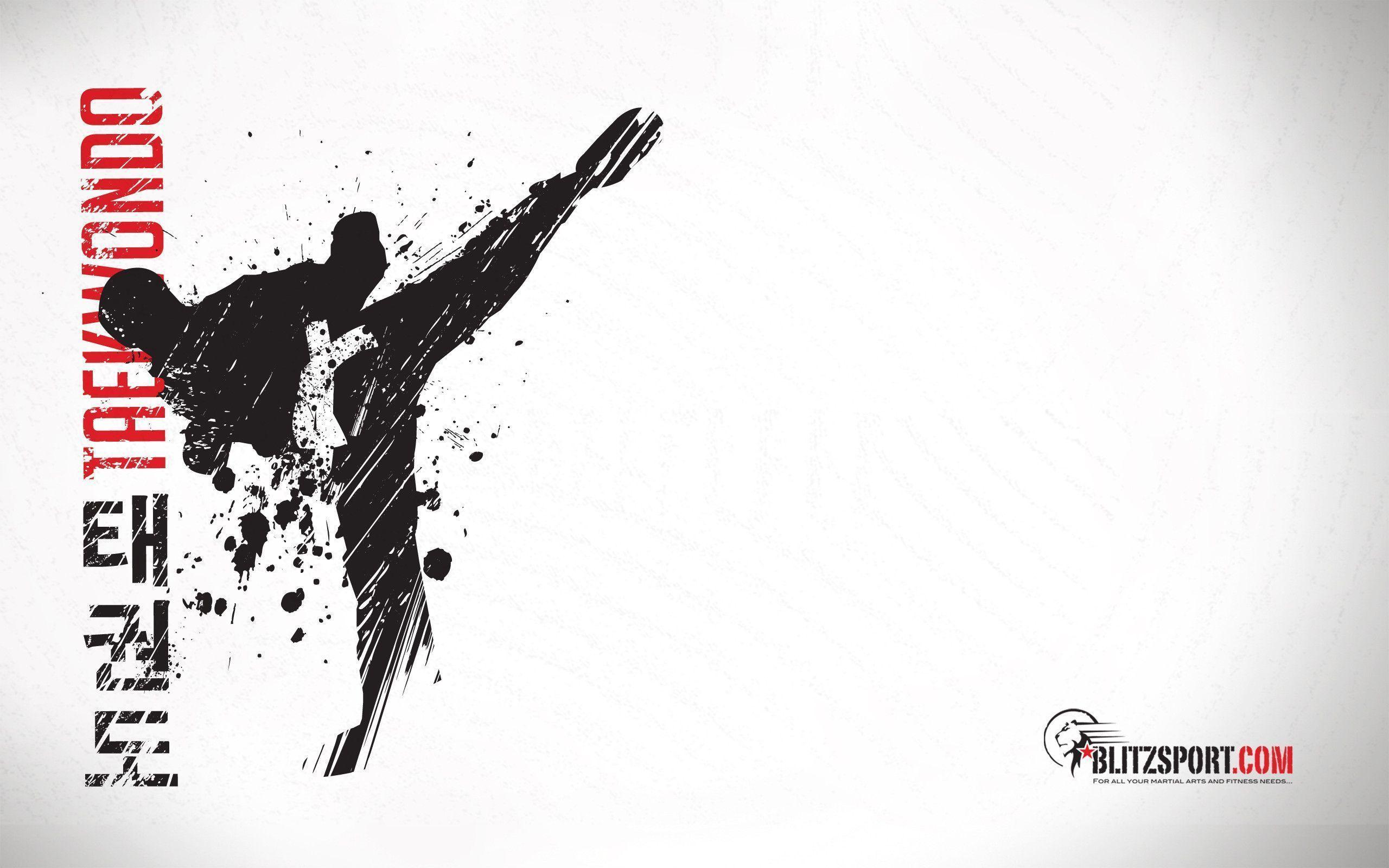 Taekwondo Desktop Wallpapers   Top Taekwondo Desktop 2560x1600