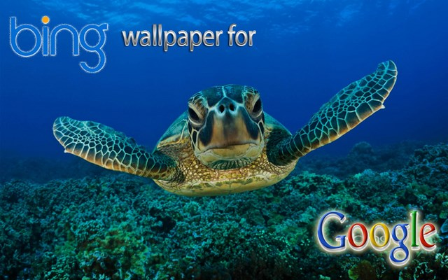 the Bing Wallpaper for your Google Homepage to change the Wallpaper 640x400