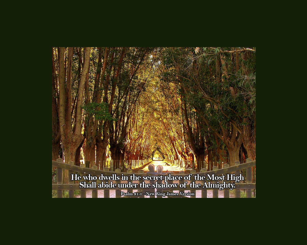 psalm 911 wallpaperjpg 1280x1024