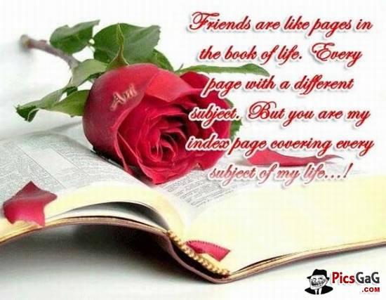You Are my Best Friend Wallpaper my Friend Best Friendship 550x427