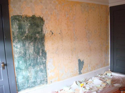 wallpaper removal 2015   Grasscloth Wallpaper 500x375