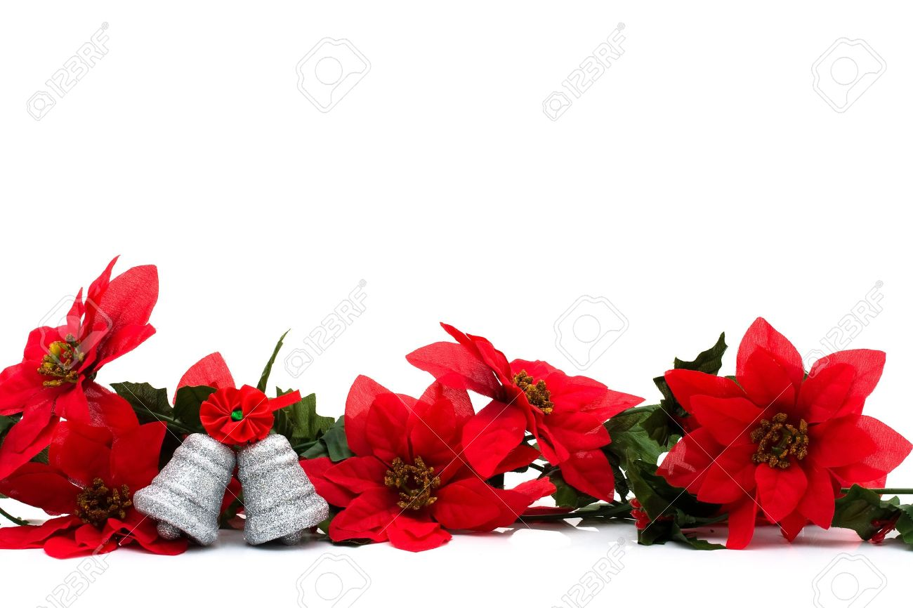 Poinsettia Border On A White Background With Silver Bells 1300x866