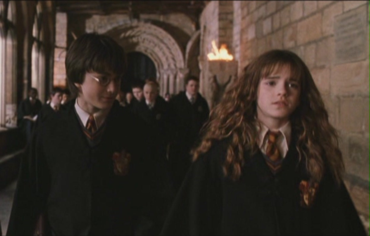 Harmony   Chamber of Secrets   Harry and Hermione Image 11639176 1245x796