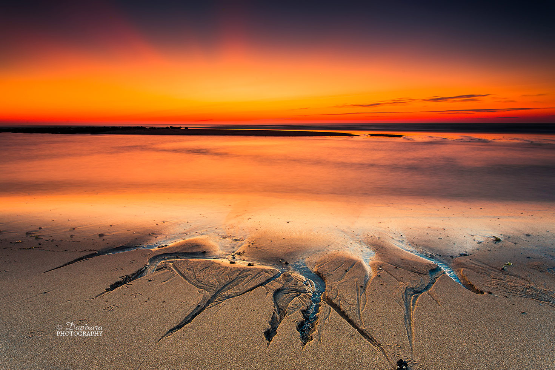 Cape Cod National Seashore The Official Dapixara Blog   The 1471x980