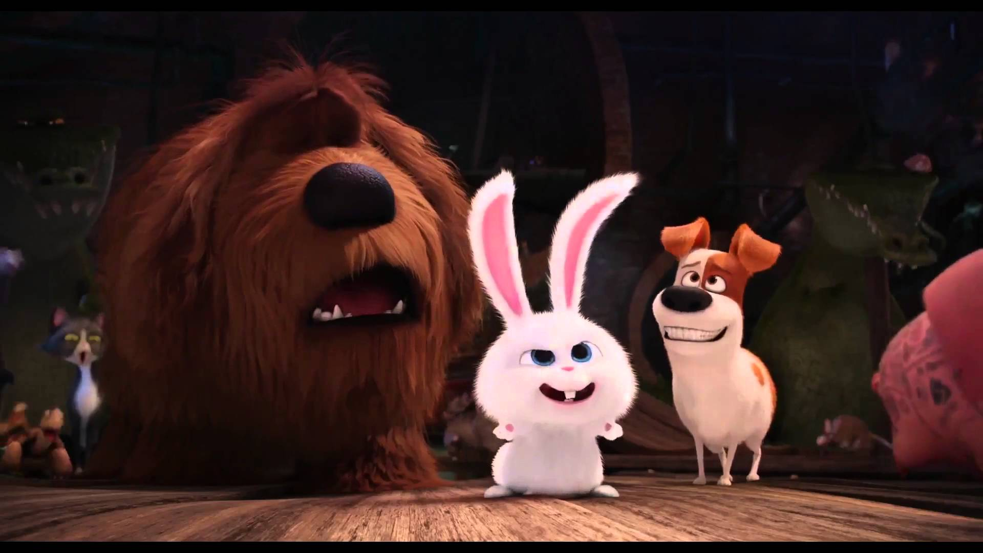 The Secret Life of Pets Wallpaper   HD Wallpapers Backgrounds of Your 1920x1080