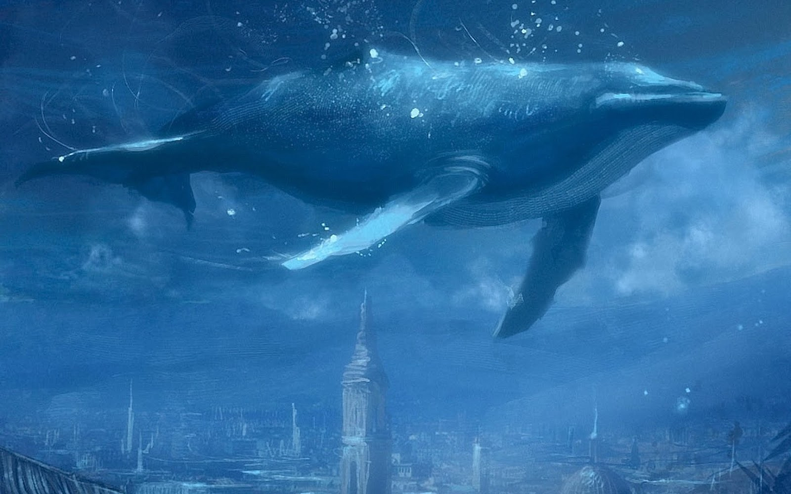 The Blue Whale The Wildlife 1600x1000