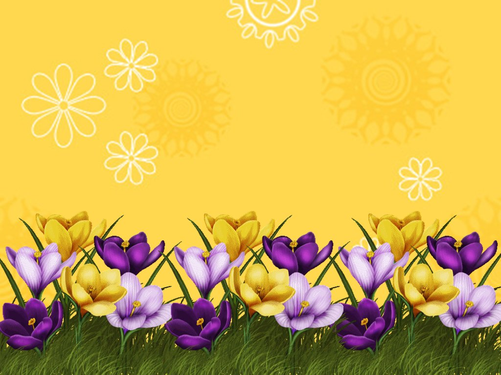 Flower border Download PowerPoint Backgrounds   PPT Backgrounds 1024x768