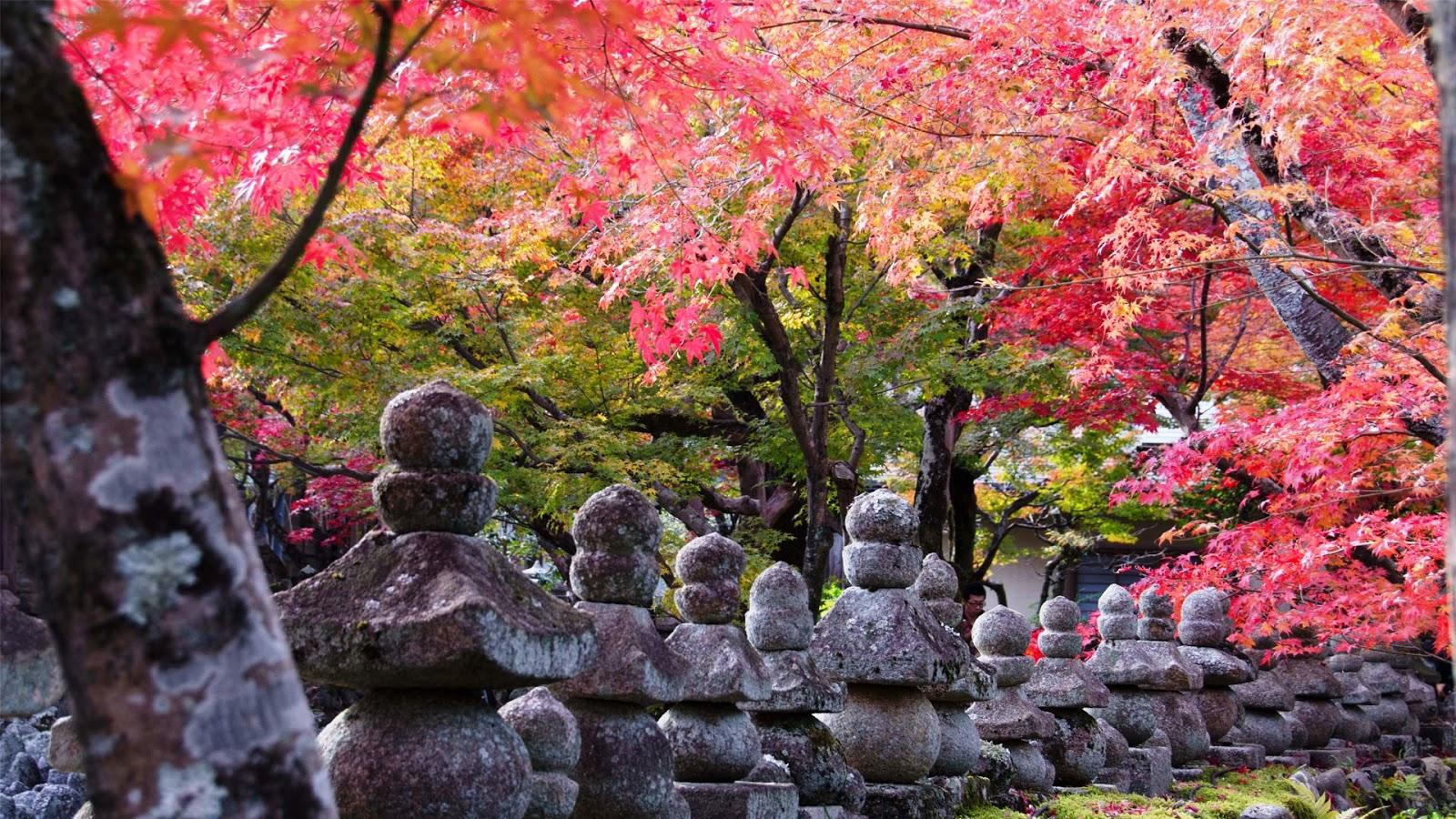 Bakas em Tokyo tour pelo Jap227o   Kyoto 1600x900