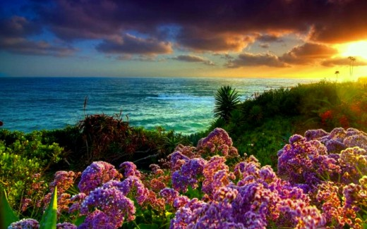 35 Beautiful Spring Pictures And Wallpapers: Spring Desktop Wallpapers Amazing Collection