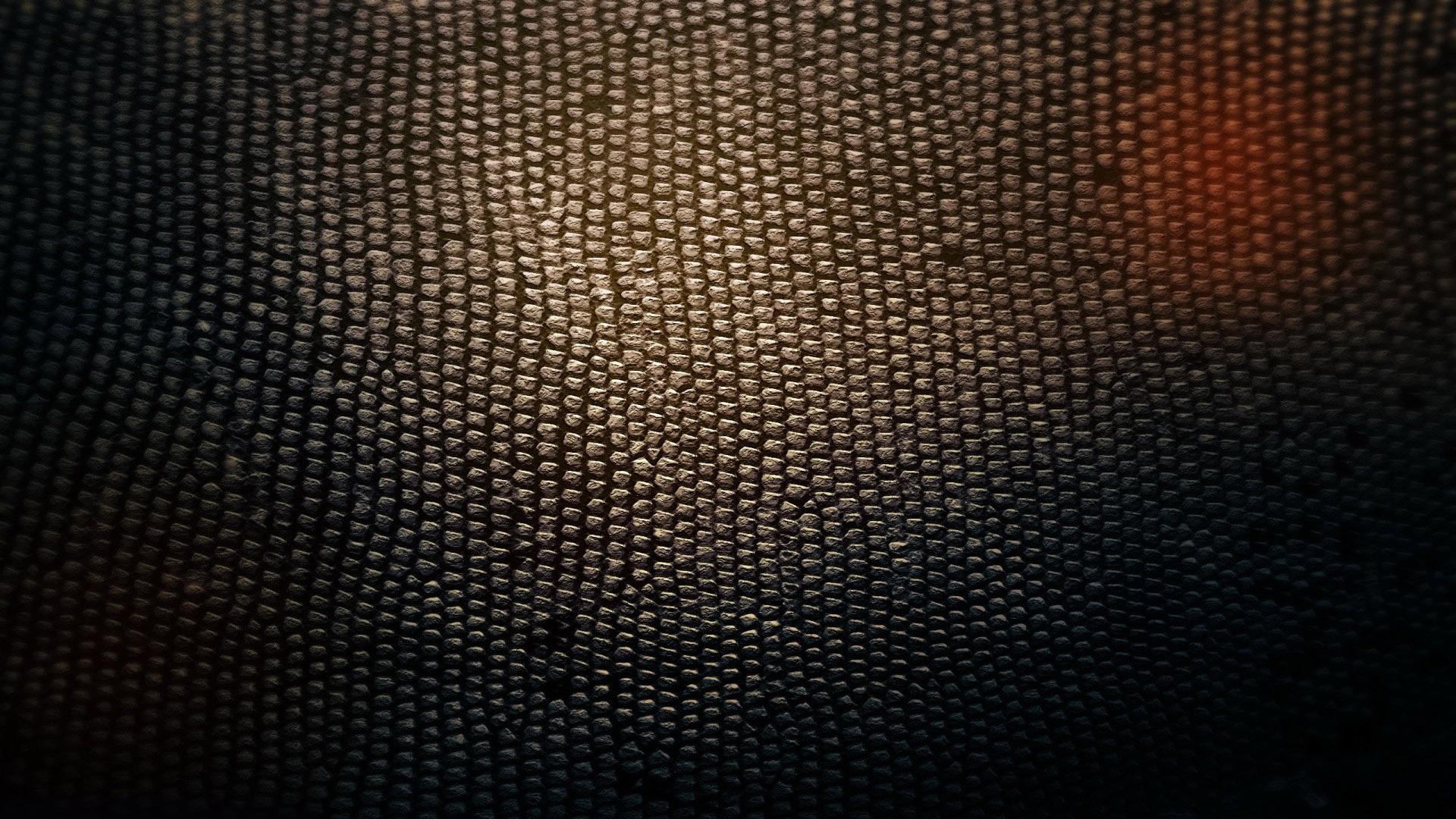 Download Snake skin wallpaper 1920x1080