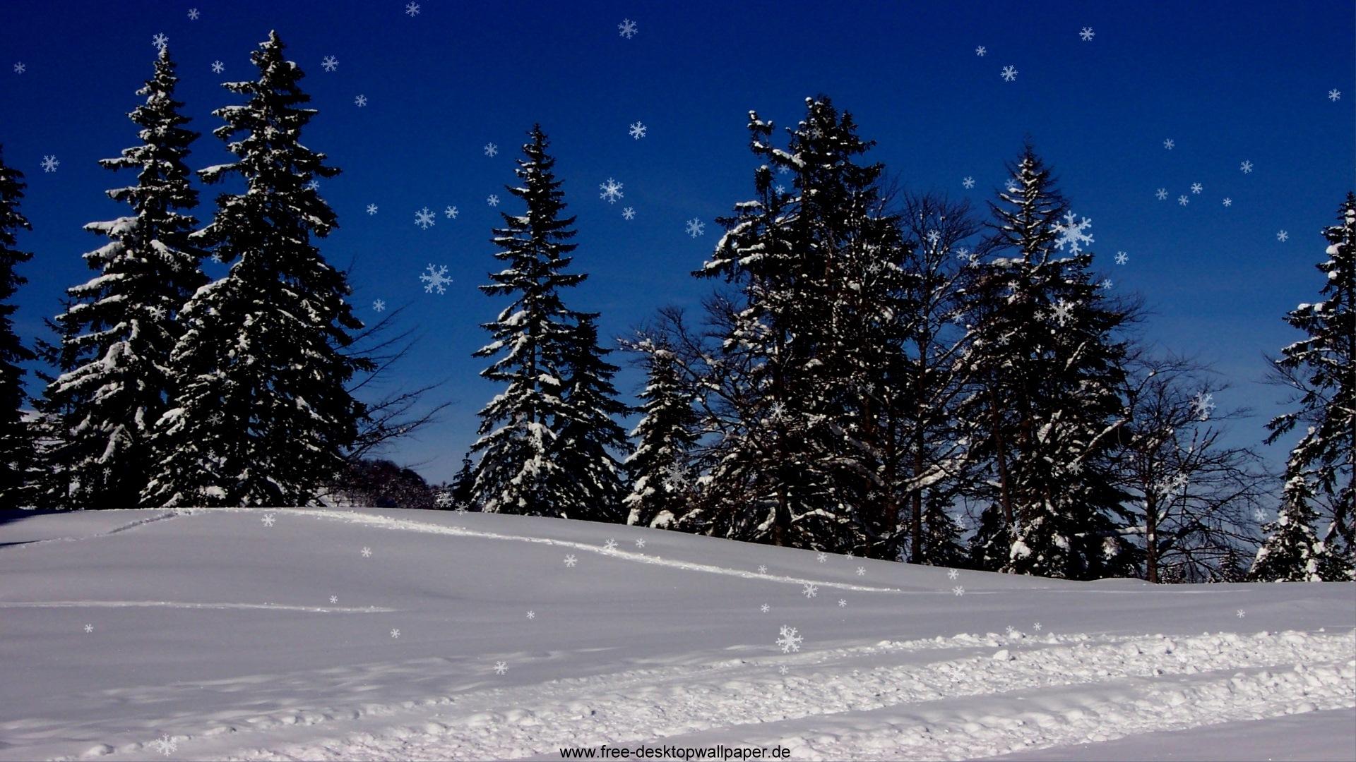 Nature Christmas Snow Widescreen 1920x1080 Desktop Wallpaper 1920x1080