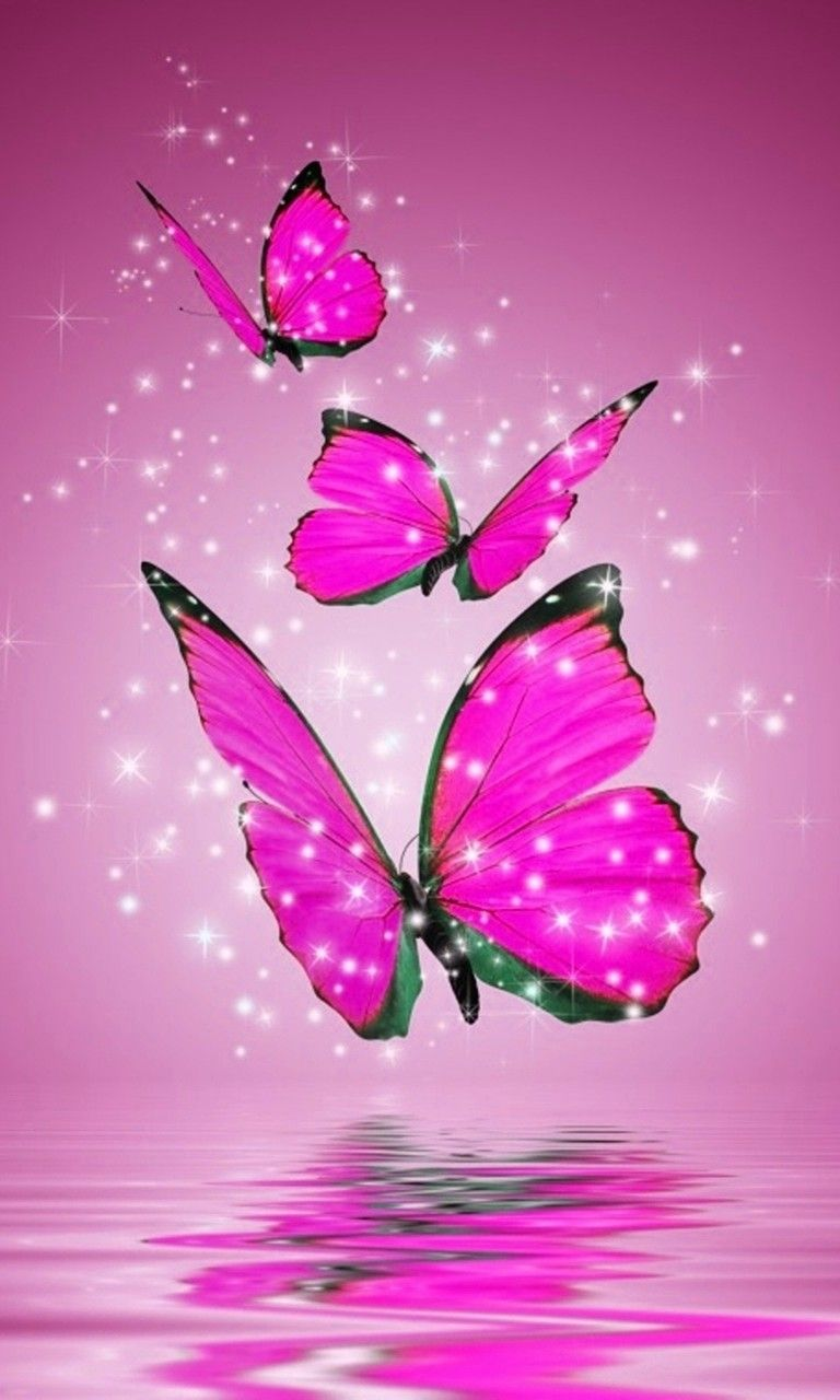 pink and black butterfly wallpapers Currently 2505 1 2 3 4 5 768x1280