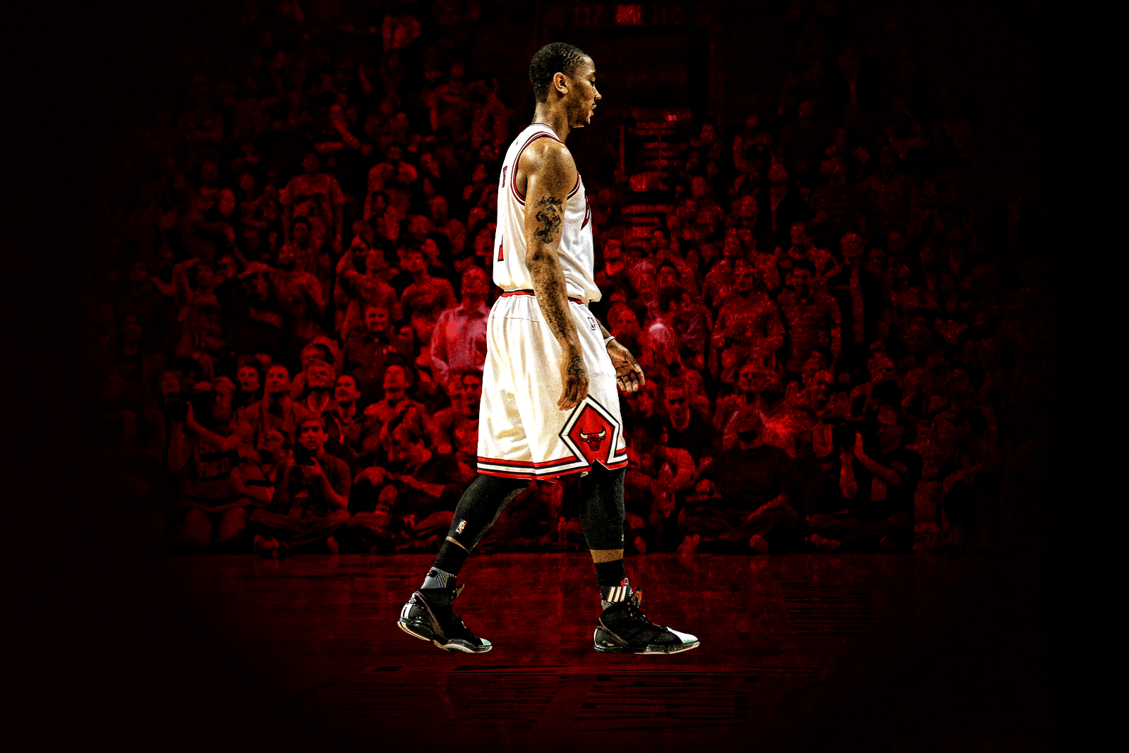 Derrick Rose Wallpapers 2016 HD 1600x1067
