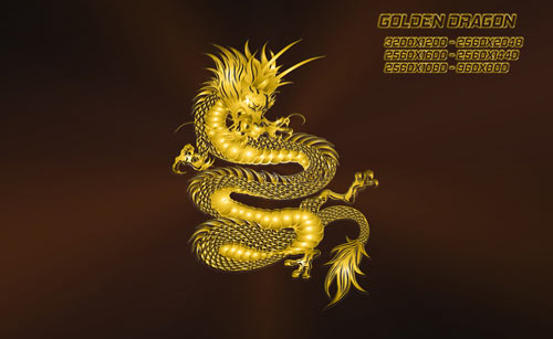 Gold Chinese Dragon Wallpaper Exuding dragon wallpaper 500x307