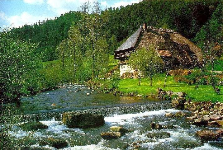 and Inspirational Images of Black Forest Germany   HD Wallpapers 716x482