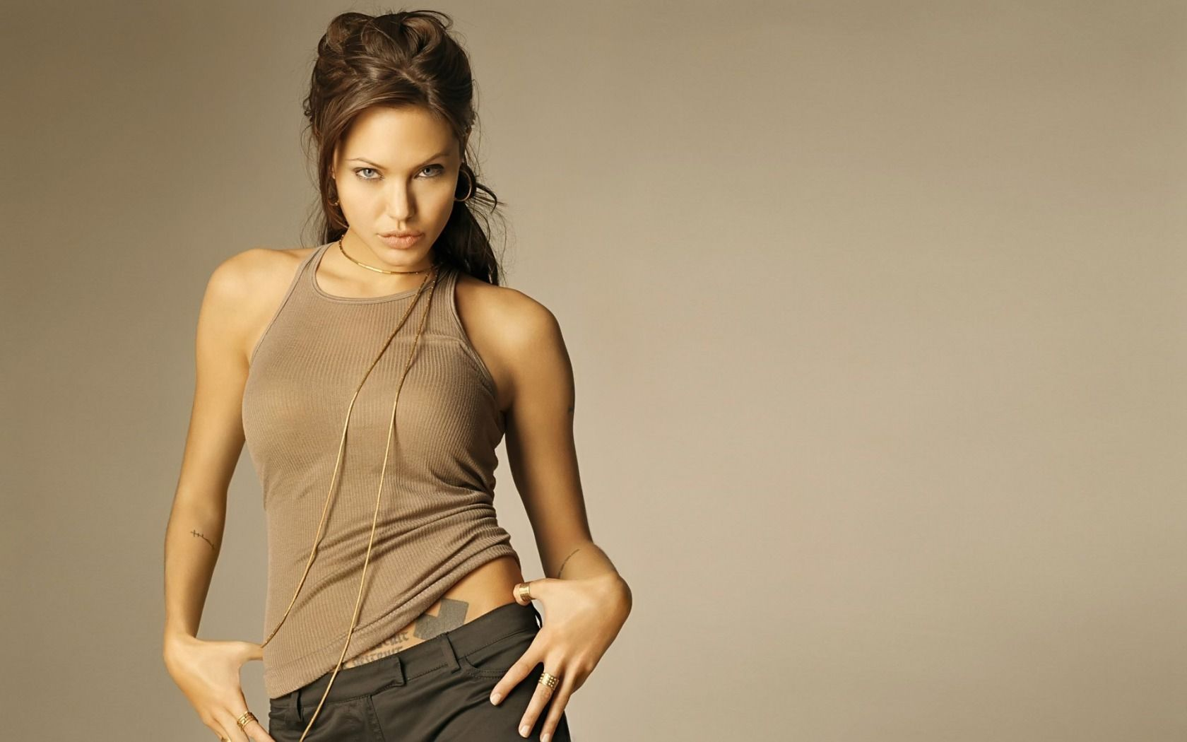 Angelina Jolie actress angelina jolie brunette girl gray 1680x1050