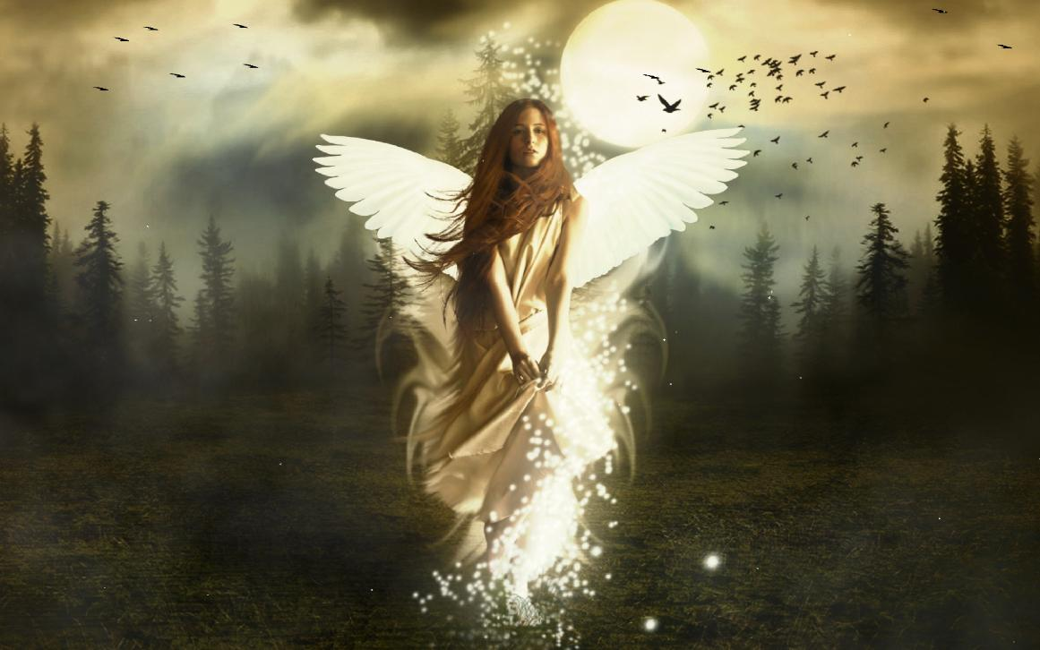Beautiful Angel Screensaver 1161x726