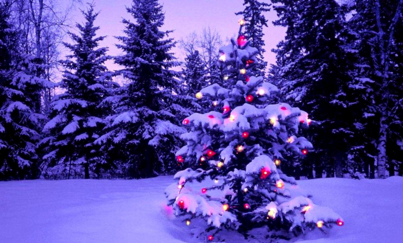 Christmas Desktop Backgrounds Soft Wallpapers 1368x828