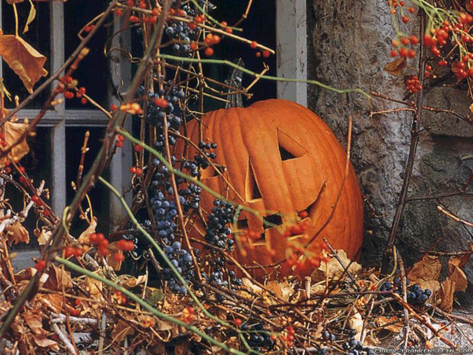Halloween Pumpkin wallpapers   Crazy Frankenstein 1600x1200