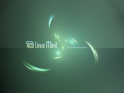Linux Mint desktop wallpaper Flickr   Photo Sharing 500x375