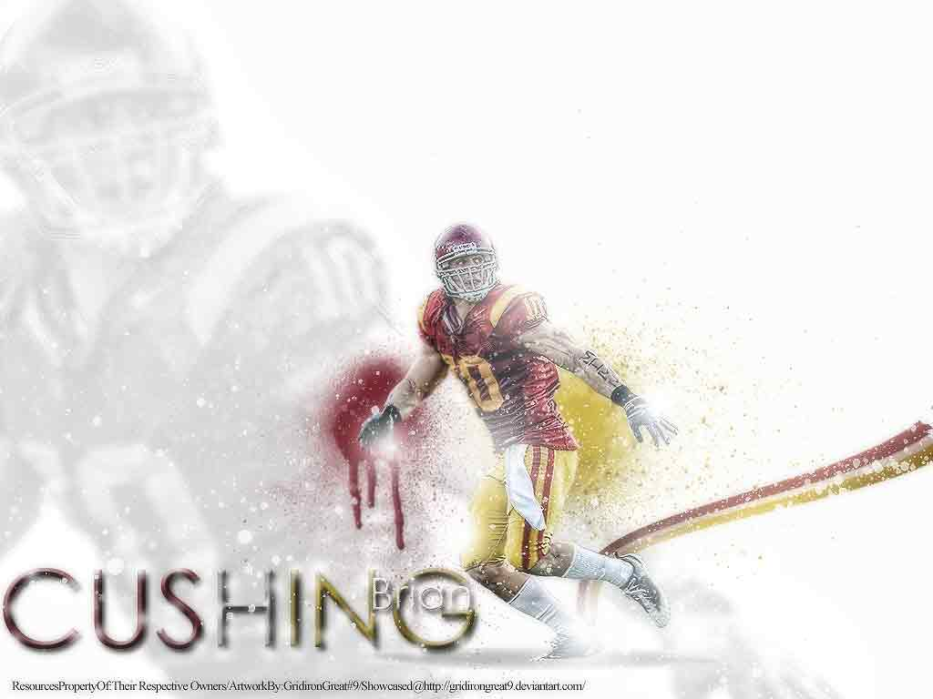Wallpapers   Brian Cushing wallpaper 1024x768