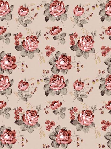 Rose Wallpaper via Tumblr We Heart