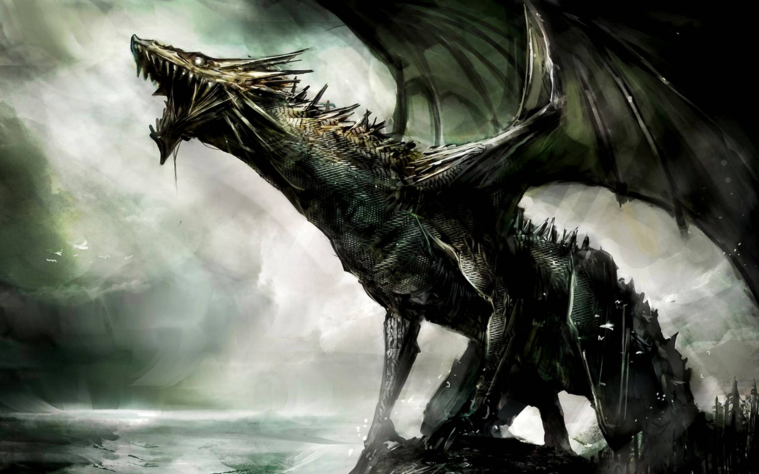 Dragon Illustration An illustration of a dragon A dragon is a 2560x1600
