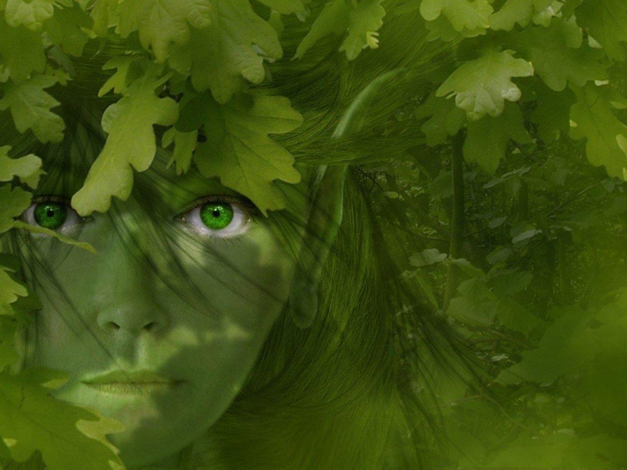 Green Eyes Computer Wallpapers Desktop Backgrounds 1280x960