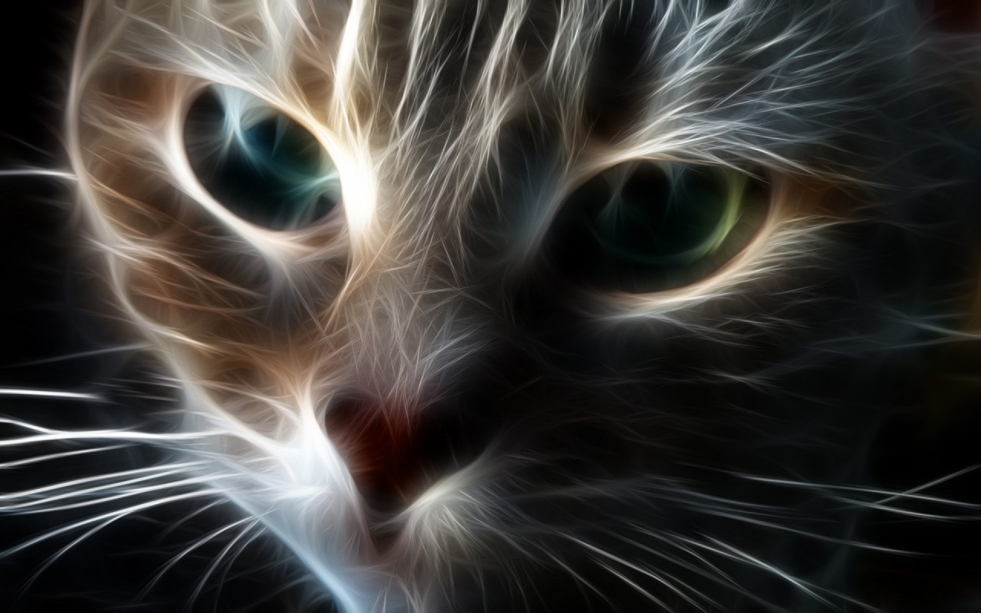Free Download Abstract Cat Hd Cool Wallpaper 1920x1200 For Your Desktop Mobile Tablet Explore 72 Cool Cat Backgrounds Cool Desktop Wallpapers Kitten Wallpapers Free Download Xxlrg Wallpaper Cats With Quotes