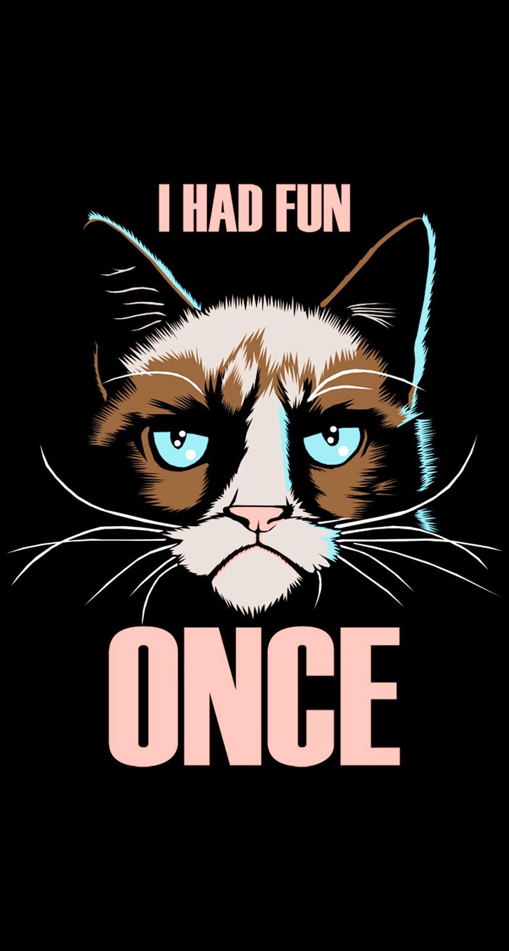 Grumpy Cat I Had Fun Once iPhone 6 Plus HD Wallpaper iPod Wallpaper 1028x1920