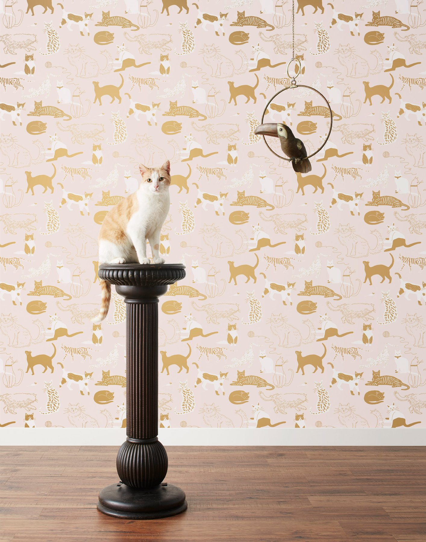 Cats Meow Blush Wallpaper Hygge West 1414x1800