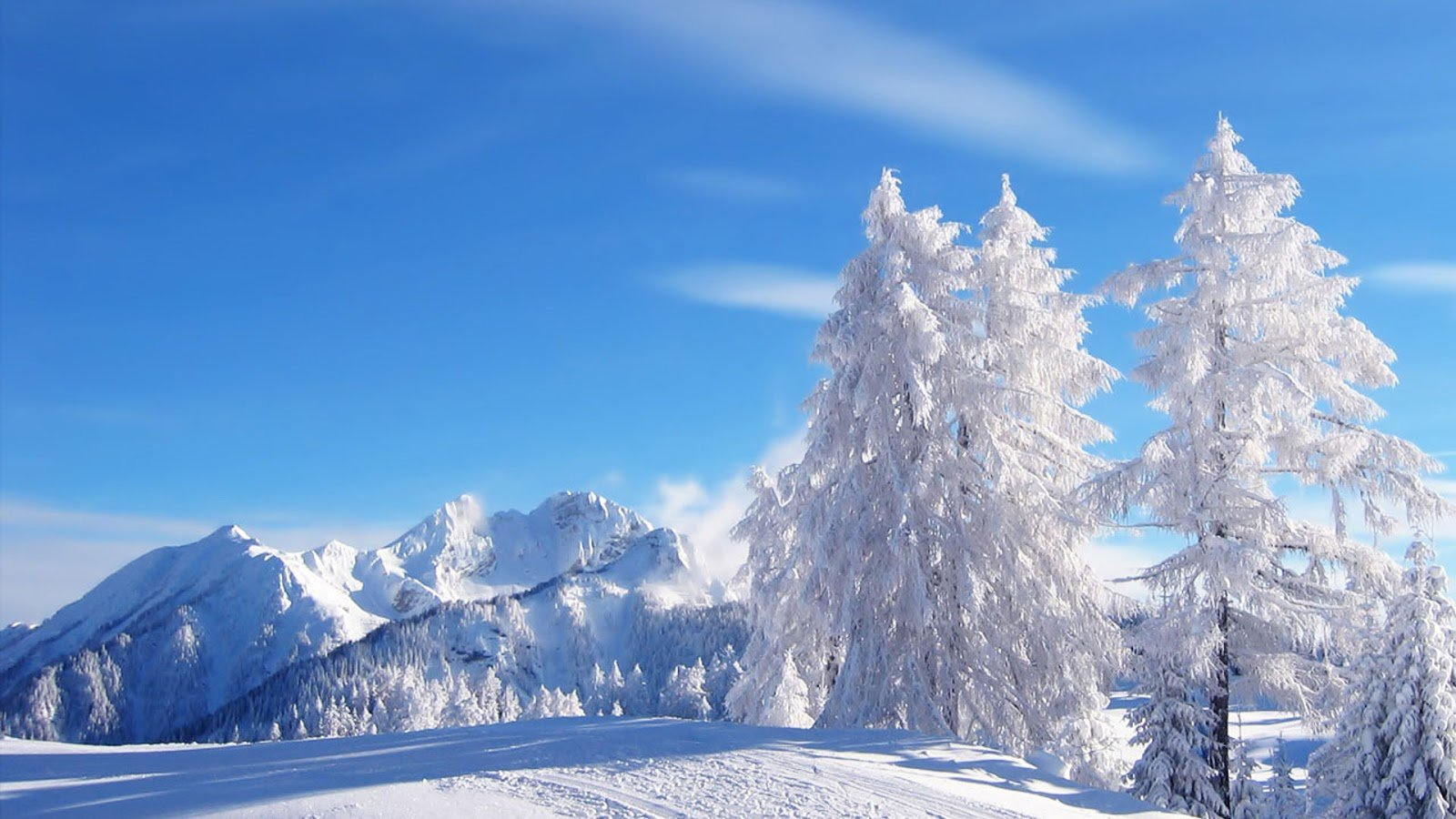 Winter Beautiful view 1600x900