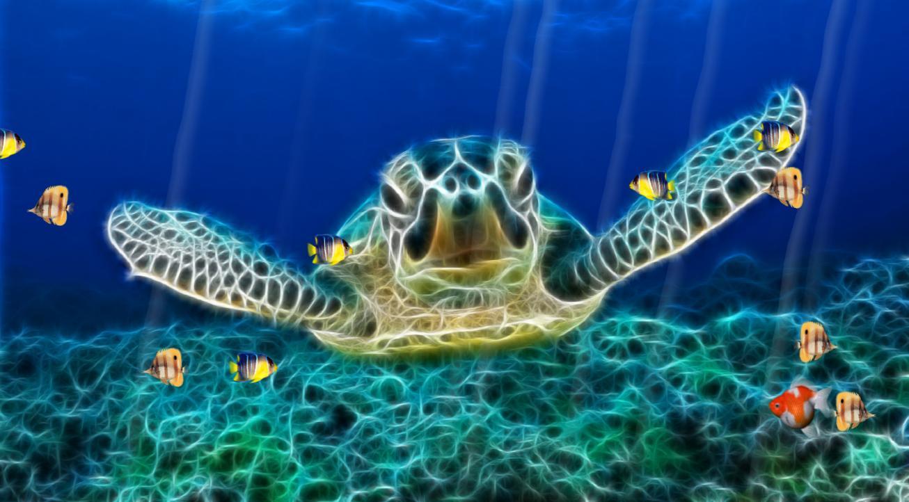 Ocean World Animated Wallpaper DesktopAnimatedcom 1306x722