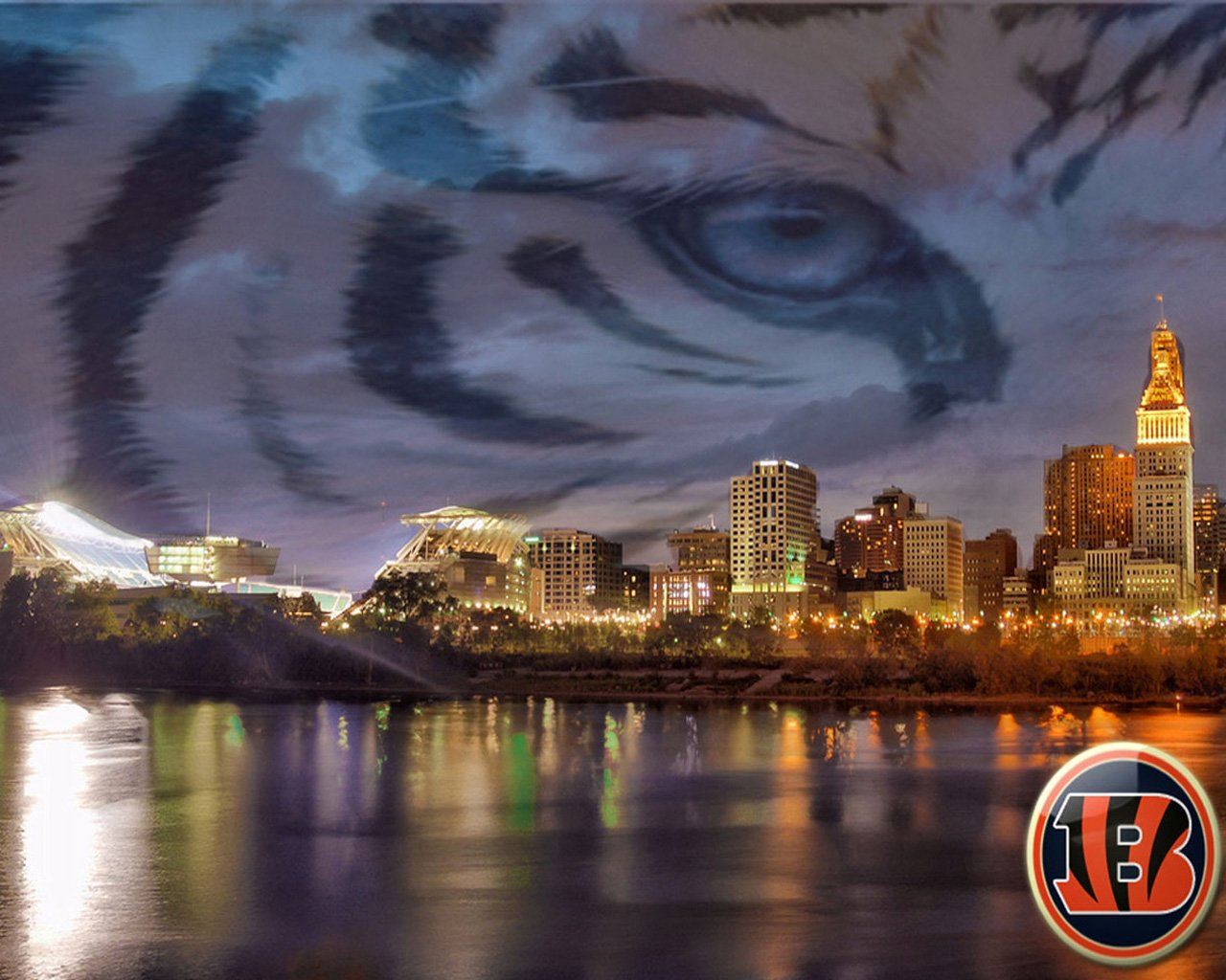 cincinnati bengals wallpaper and screensavers - wallpapersafari