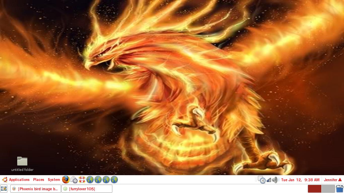 FULL WALLPAPER Phoenix bird wallpaper 1366x768