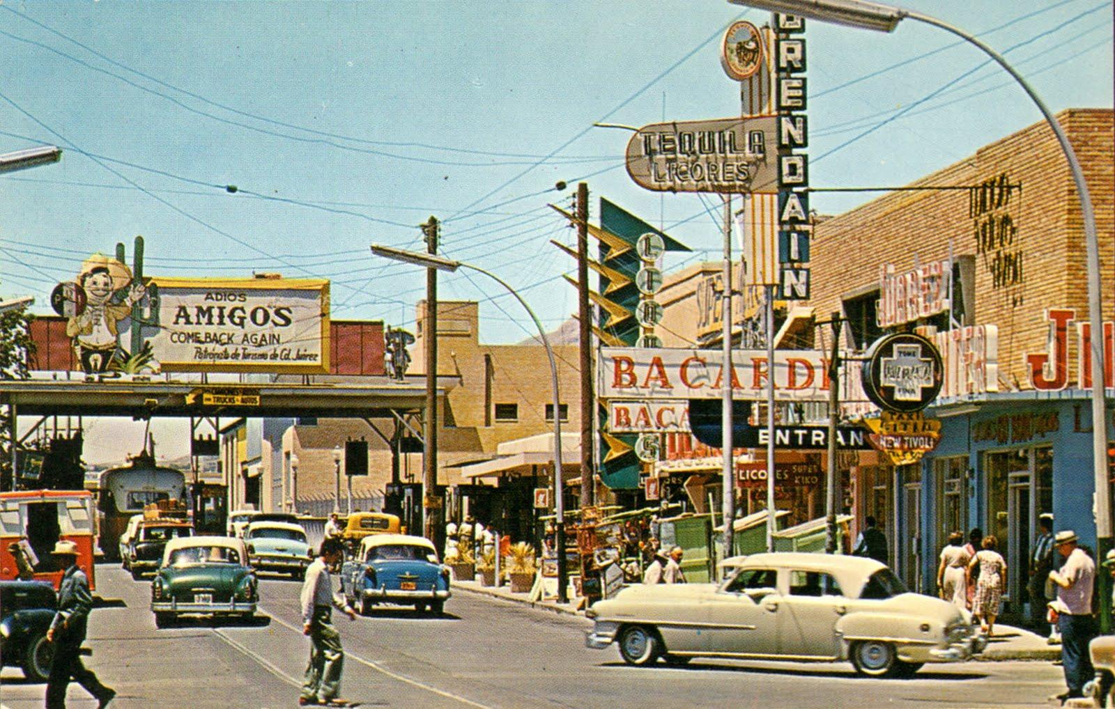 Wallpaper Stores In El Paso Texas   wallpaper animal hd 1600x1018