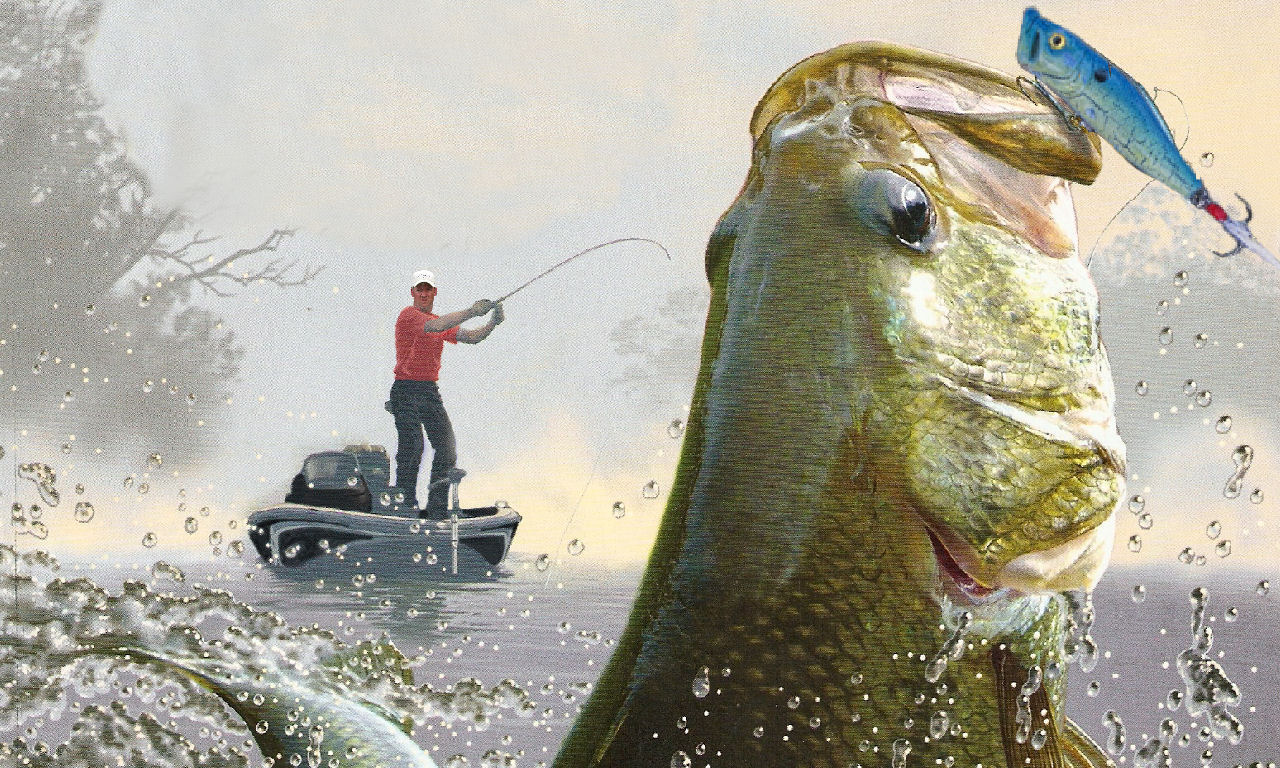 largemouth bass fishing wallpaper