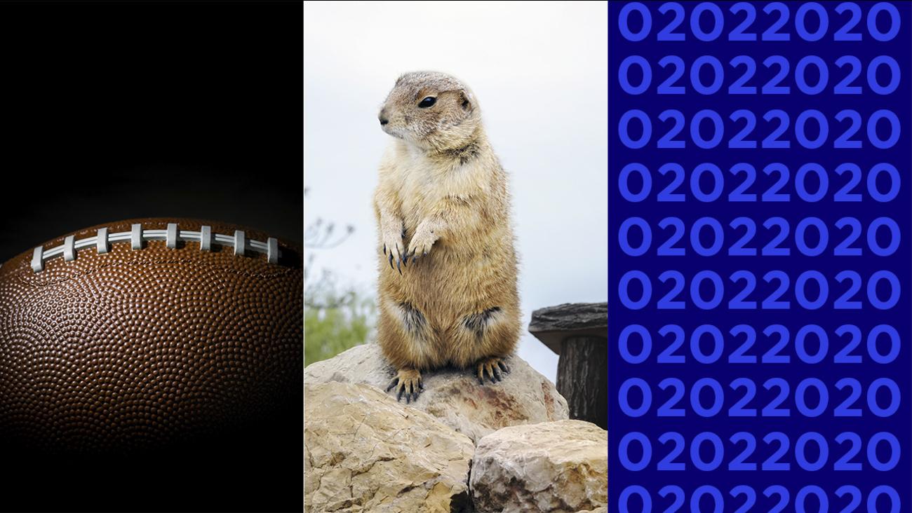 02022020 Feb 2 is palindrome day Super Bowl Sunday Groundhog 1300x732
