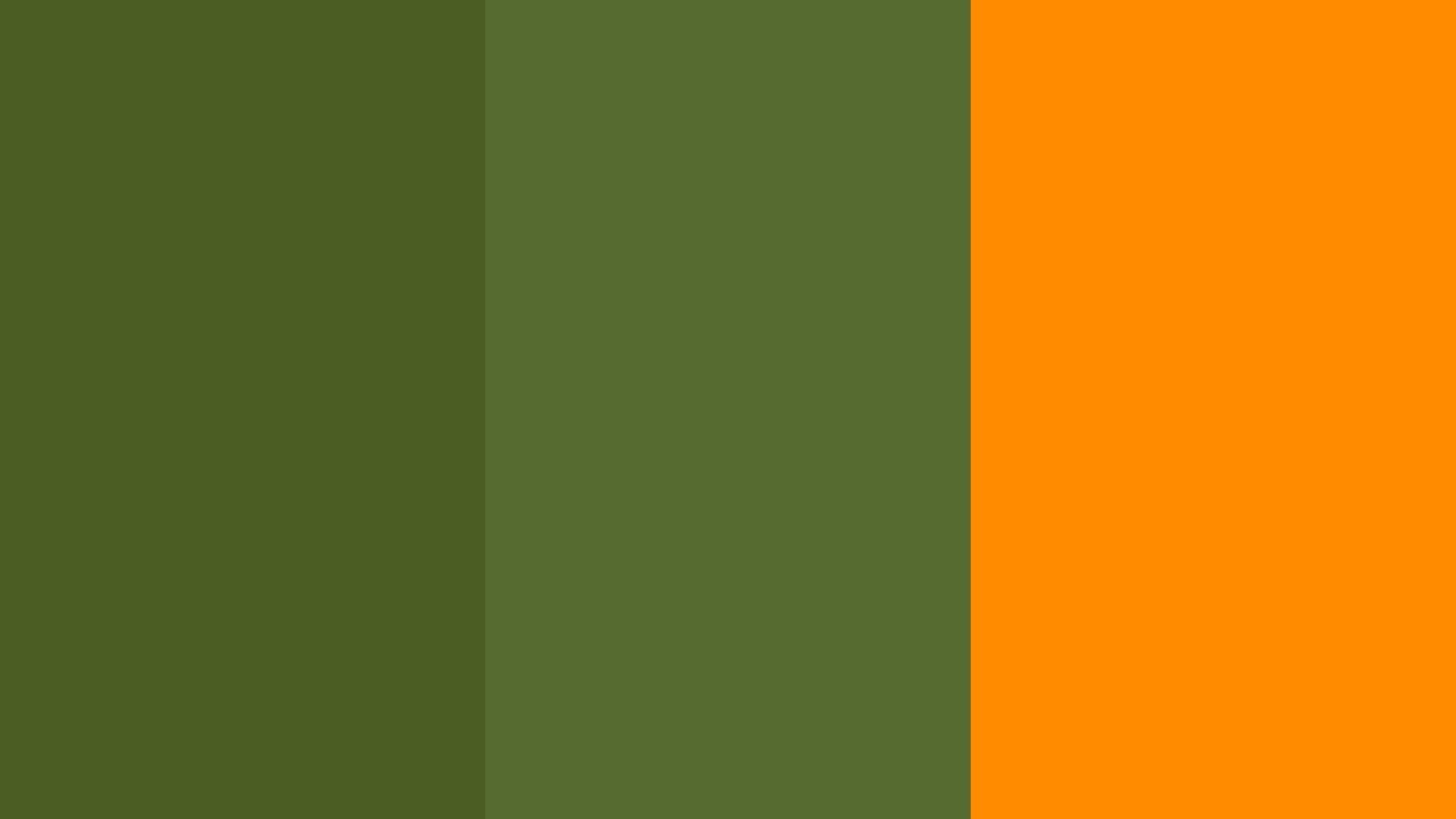 Olive green wallpaper wallpapersafari - Dark orange wallpaper ...