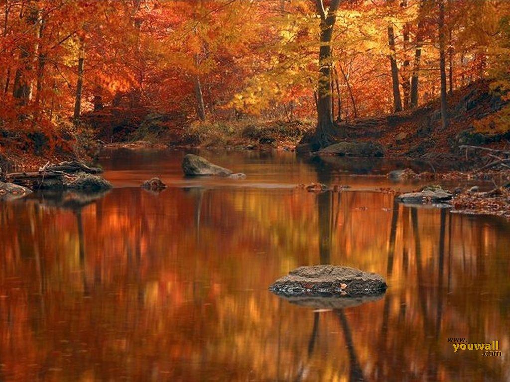 YouWall Autumn Wallpaper wallpaperwallpapersfree wallpaper 1024x768