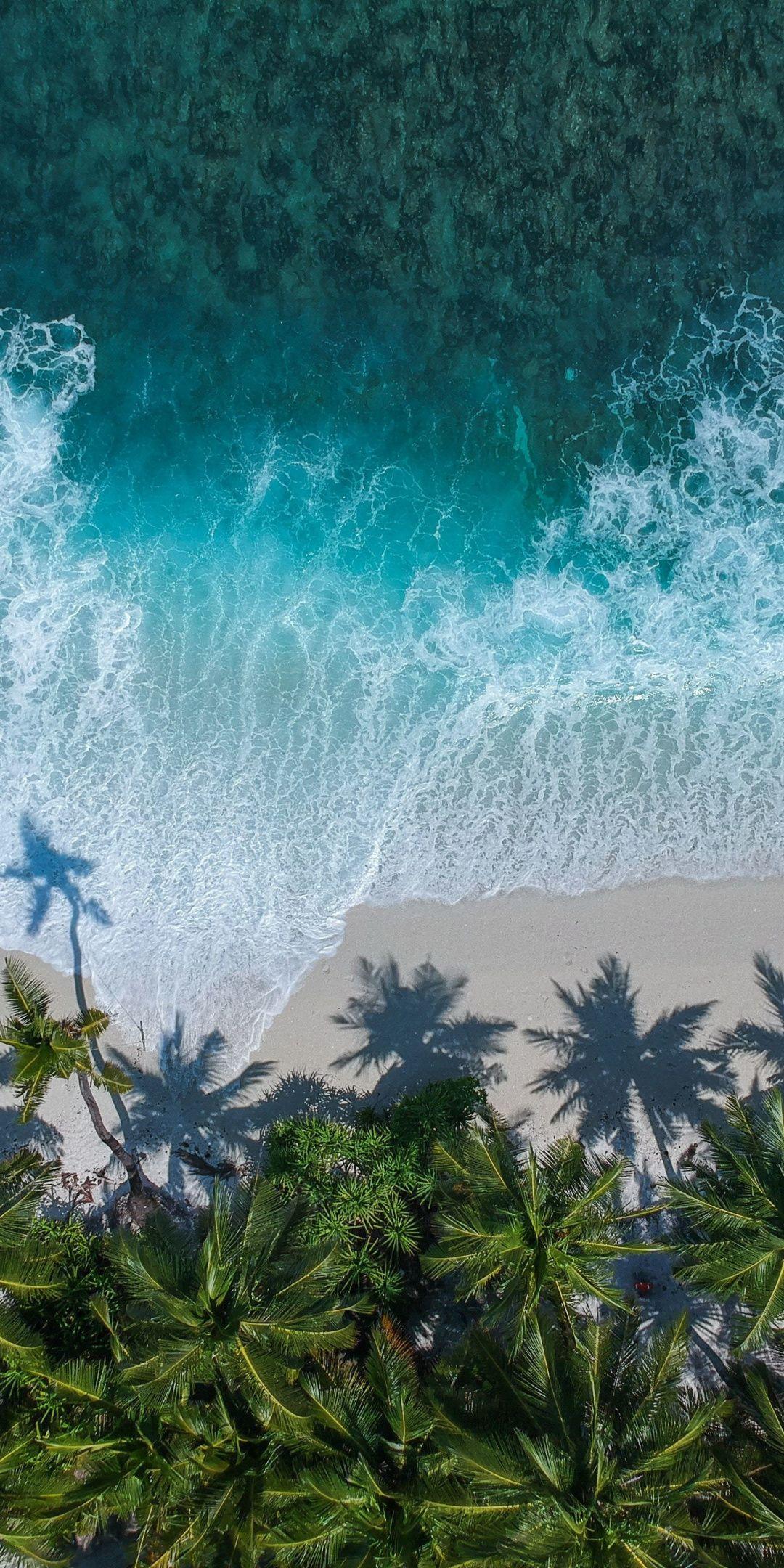 Beautiful beach aerial view palm trees sea 1080x2160 wallpaper 1080x2160